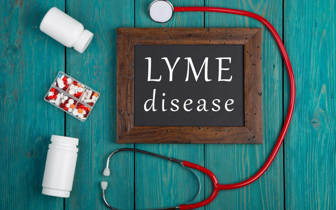 How to Treat Lyme Disease – Treatment Options
